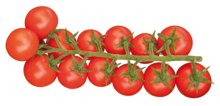 Pomodoro Cherry