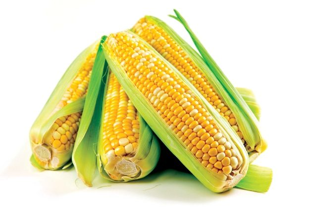 Pannocchie di mais