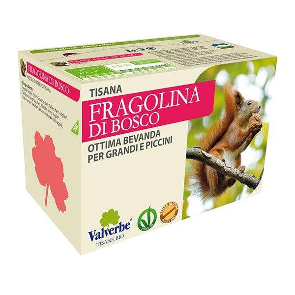 Tisana Fragolina di bosco Valverbe