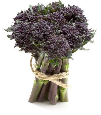 Broccoli Viola Cimette