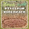Semi di Psyllium biologico