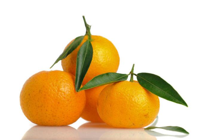 Mandarini Varietà Avana